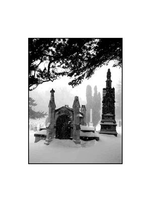 Woodlawn Cemetery in 2008 February