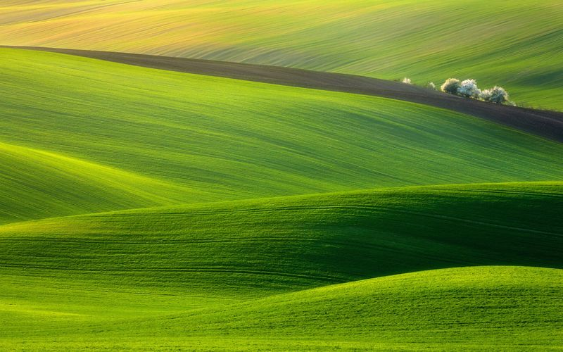 Crayonné paysage. Krzysztof Browko,  Sony World Photography Awards 2012