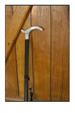 Canneop_2