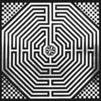 Labyrintheamiens